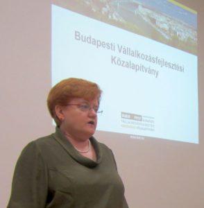 """A workshopot Szalai Piroska az Alapítvány Kuratóriumi elnöke nyitotta meg. Elmondta, hogy az eseményt elsősorban azoknak a vállalkozásoknak szervezték, amelyek meglévő kereskedelmi kapcsolataikat szeretnék fejleszteni az USÁ-ban, vagy új kapcsolatokat kívánnak kialakítani. Szalai Piroska kiemelte, hogy egy-egy """"vállalkozásnak a sikeres működéshez három fontos dologra van szüksége. Egyrészt kell, hogy tőkéje legyen, másrészt nagyon fontos a kapcsolati tőke és harmadrészt fontos a tudástőke megléte. A mostani workshop ez utóbbi két tőkeformához kívánja hozzásegíteni a vállalkozásokat."""""""