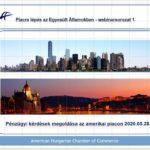 Piacralépés az Egyesült Államokban – AmHunCham Webinarsorozat 1.